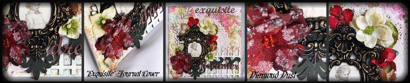 Exquisitecoverclose2-1