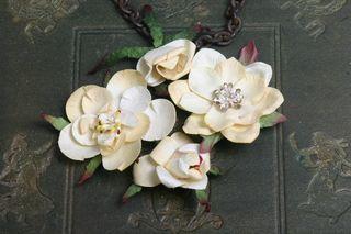 Magnolia_blooms_cream