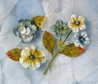 Blue velvet blossoms