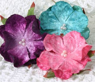 Velvet flowers mixed