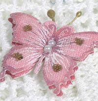 Pink butterfly spring drjeeling