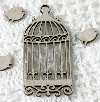 Birdcage beauty