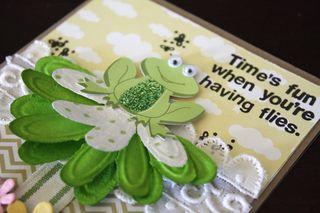 Frog-detail2