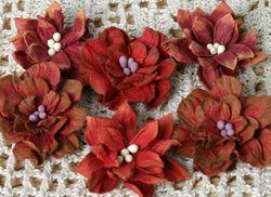 Darjeeling Dahlia  RED