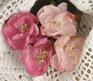 BEAUTY  rose smaller