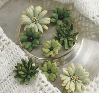 Beauty Mini Mix Green smaller