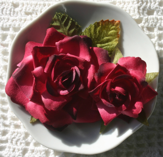 Garden Rose red n burg