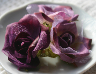 Fairy Rose Buds purple