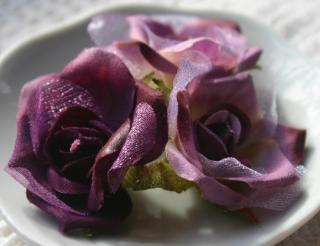 Fairy Rose Buds purple