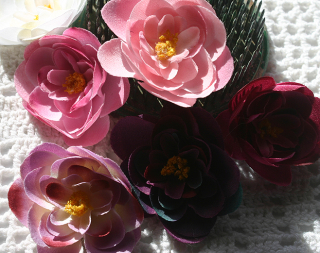 Ranunuculus mixed pinks