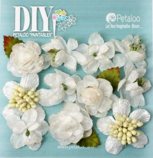 BEAUTY DIY Mini's