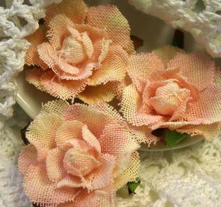 Garden Roses x 3 Rose