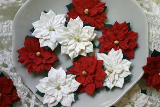 BEAUTY mini Paper Pojtsettias