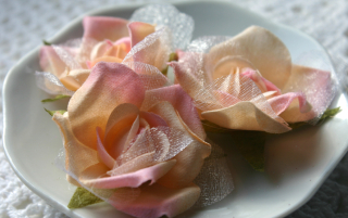 Fairy Rose Buds guava