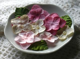 Hydrangea new pink