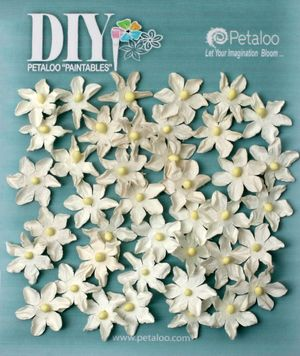 BEAUTY  Pearl Daisies x 40 DIY