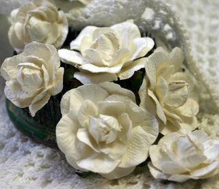 DIY Garden Roses Lg  Sm close up