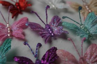 Asst butterfly colors