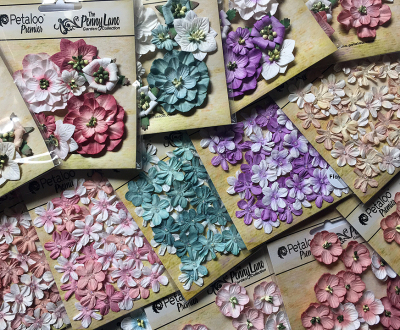 Peenny Lane flowers 2